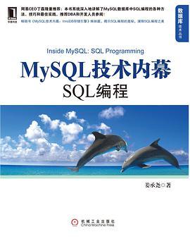 MySQL技术内幕:SQL编程PDF下载